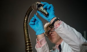 Horologist Matthew Read reassembles the mechanical swan in a process expected to take more than four days to complete.
