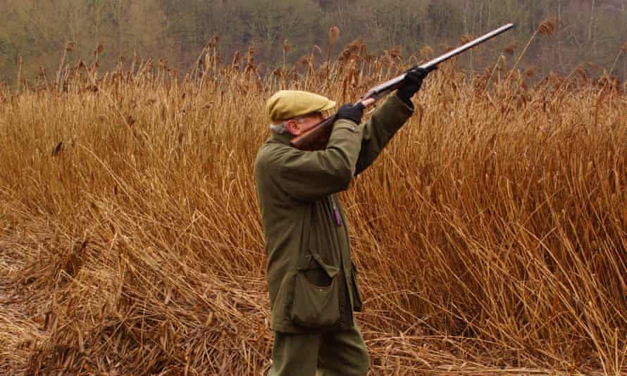 The British Association for Shooting and Conservation has applauded the UK government's decision.