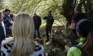Northern Wilds forest foraging, Kielder.
