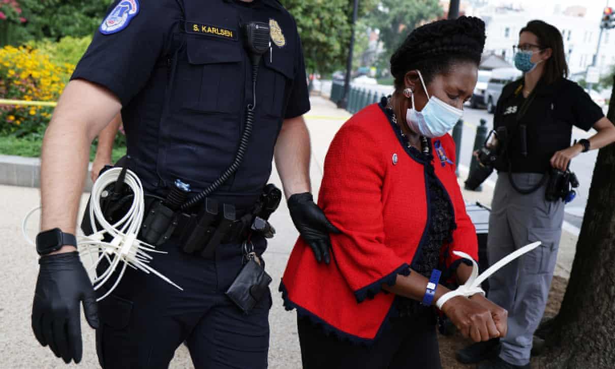 Shiela jackson Lee arrested at voting protest