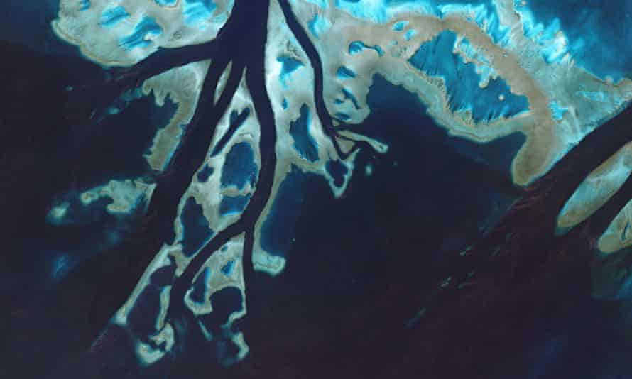 Tidal channels cut through the Great Barrier Reef
