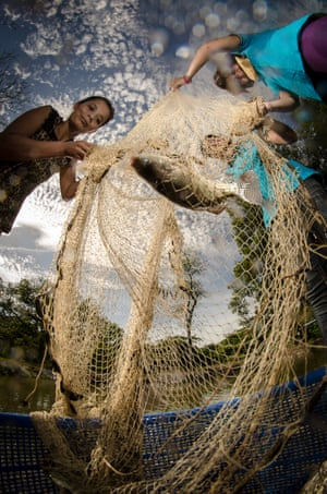 A woman fishes for tilapia in El Salvador as part of a youth economic empowerment programme