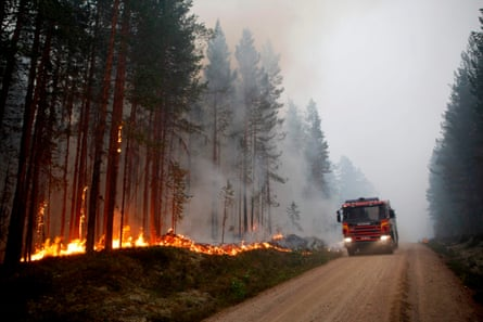 Sweden has been hit by more than 60 forest fires this month.