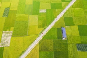An aerial view of a solar panel in agricultural fields near Dhaka, Bangladesh