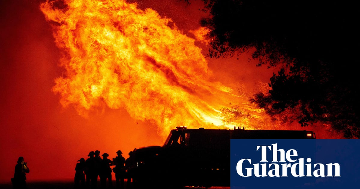 Current approach to wildfires risks lives and wastes money, say experts