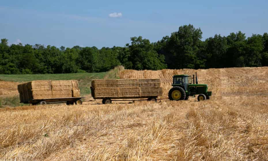 A tractor transports bales of straw after a harvest in Shelbyville, Kentucky.