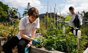 The award-winning garden at Springhallow School, west London.