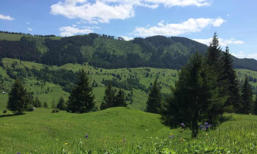 A lush green Carpathian slope dotted with shepherd huts and ambling livestock didn't look too terrifying …