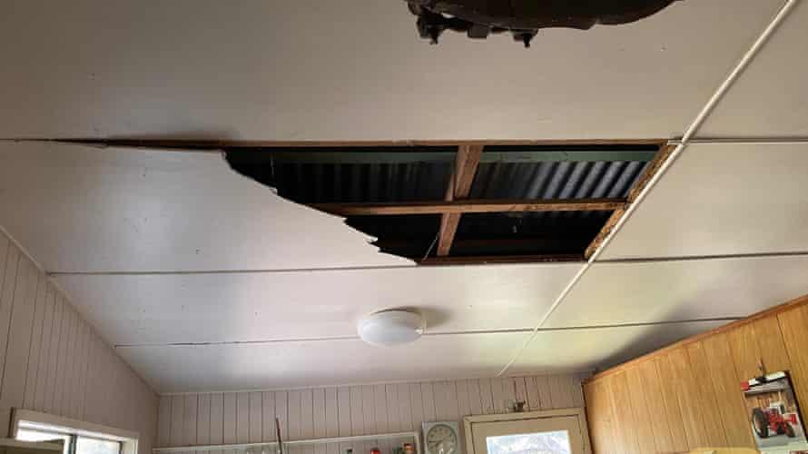 The two large coastal carpet pythons crashed through David Tait's kitchen ceiling.