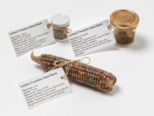 Seeds from the London Freedom Seed Bank