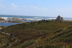 Members of the Tasmanian Aboriginal community explore the coast at King's Run, which is rich with middens, hut depressions and seal hides, telling of a long Indigenous occupation.