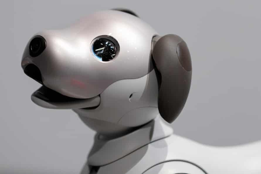 Sony's new '' aibo '' robot on display during a press conference at the company headquarters on November 1, 2017, Tokyo, Japan.