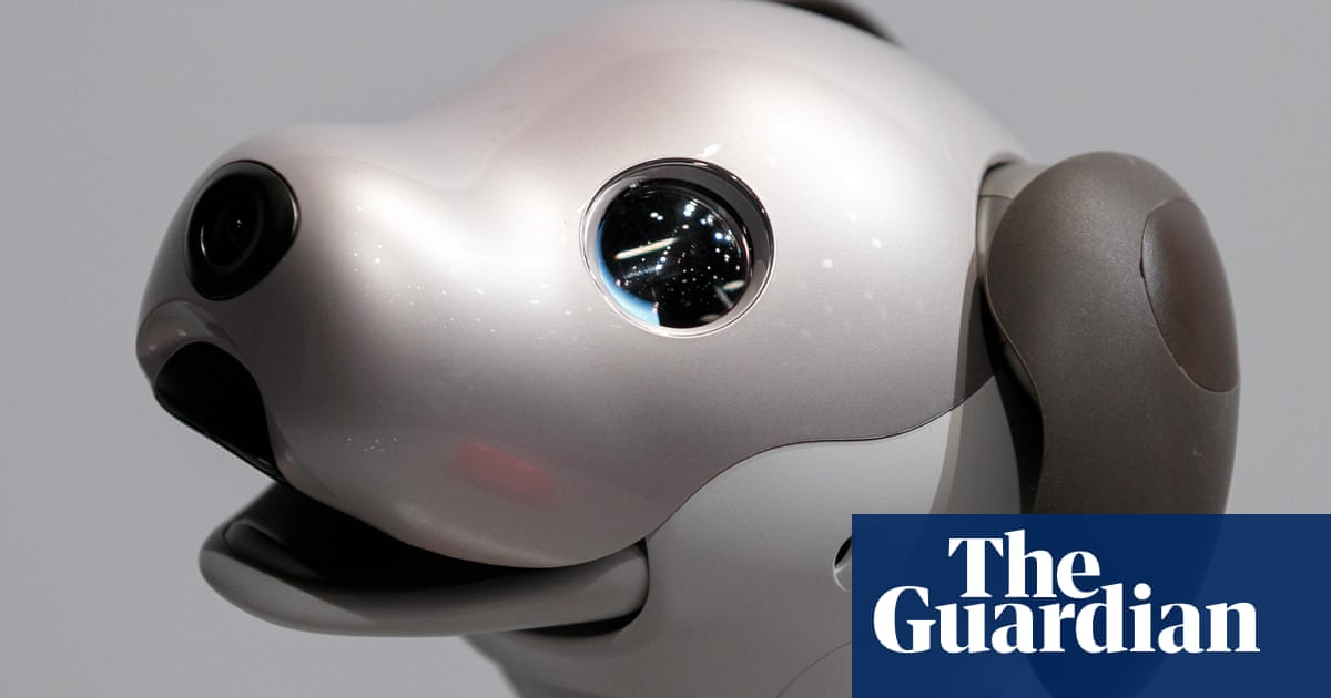 A dog's inner life: what a robot pet taught me about consciousness
