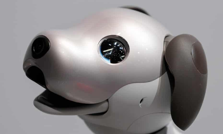 Sony's robot dog, Aibo.