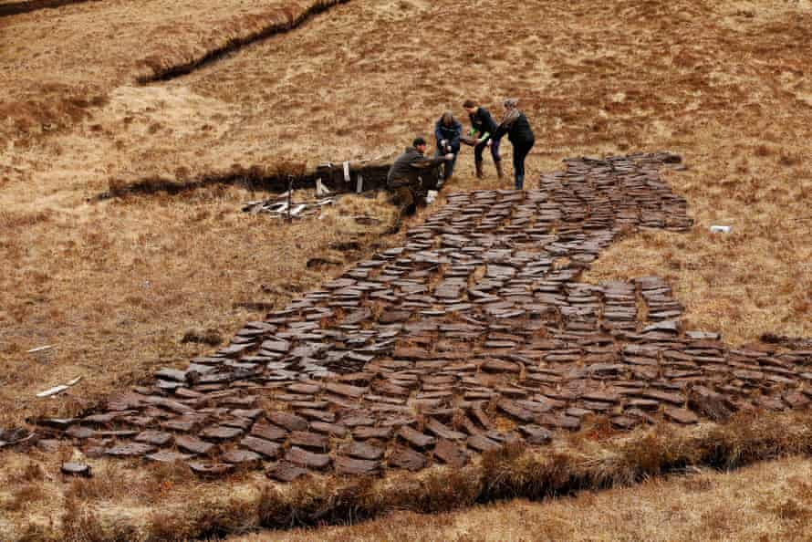 The MacLean family cut peat for fuel.
