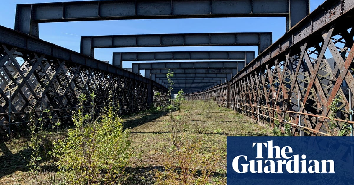 Park in the sky? Charity aims to revamp disused Manchester viaduct