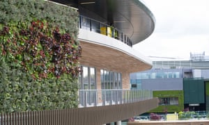 The All England Tennis Club's new living walls