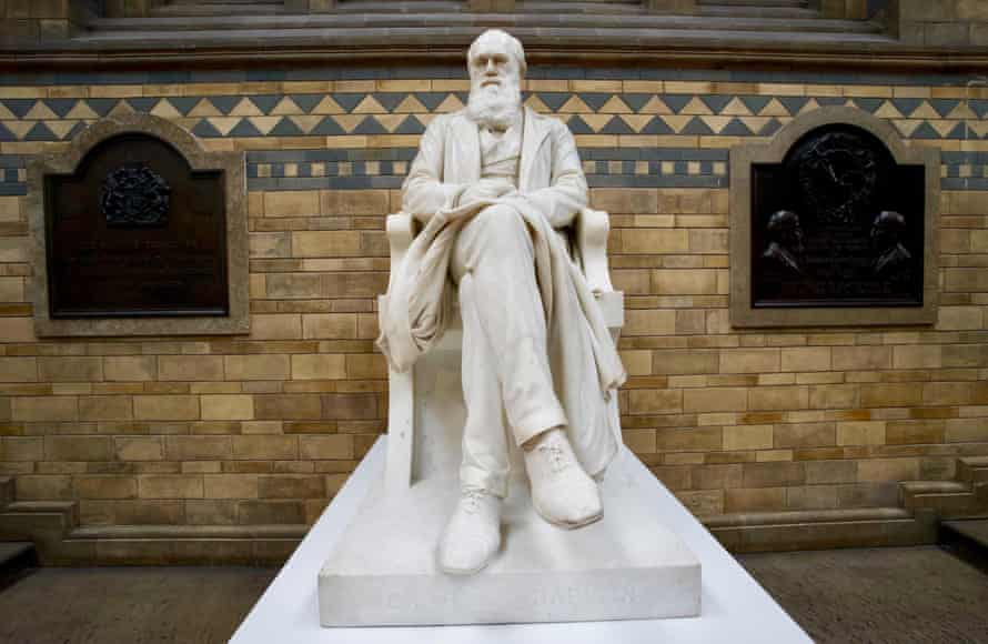 charles darwin's statue at the natural history museum in london