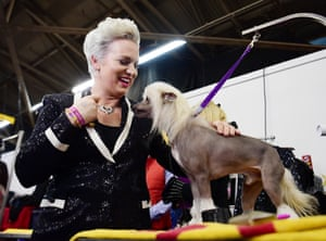 Alicia Jones plays with her Chinese Crested named Jean Luc during the 143rd Westminster Kennel Club Dog Show