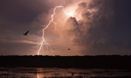 Lightning after dark at Fogg Dam conservation reserve in the Northern Territory
