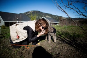 Staci O'Toole smells the soil at a Jackson Family Wines property, Santa Rosa, California.