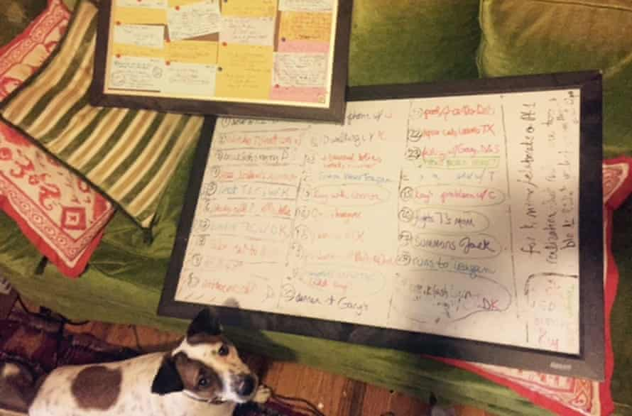 dog and post-its