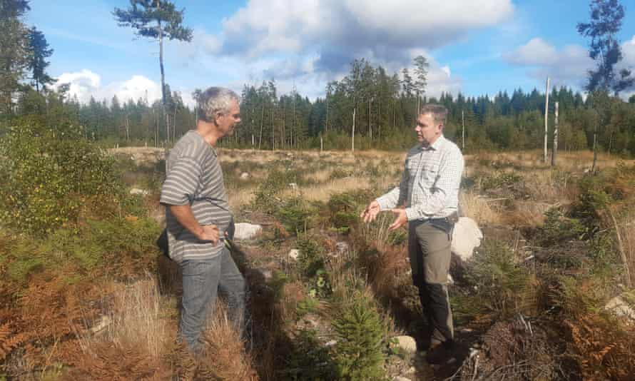 Magnus Bondesson of the Swedish Forest Agency, right, inspects Levin's clear-cut land.