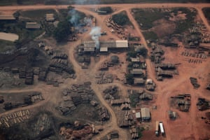 Logs cut from the Amazon rainforest are laid out beside a road near the city of Realidade, Amazonas state, 22 August