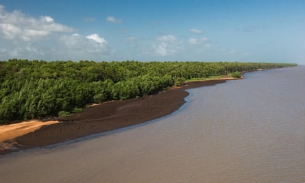 Guyana's Shell Beach