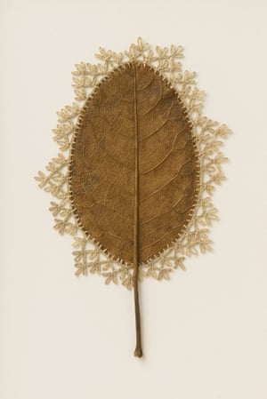 Adornment XVll, a leaf sculpture by Susanna Bauer