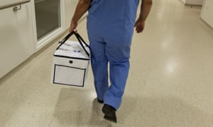 Organ for transplantation is carried in a bag