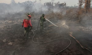 Fire fighters try to extinguish fire at a peatland in Kampar.