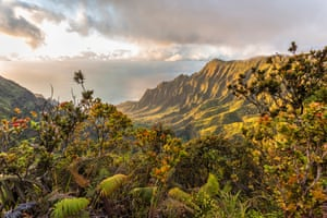 Kauai is known for its breathtaking scenery and laid-back vibe.