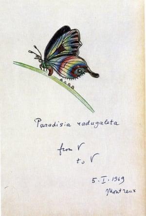 """Paradisia radugaleta"" Véra's Butterflies 44"