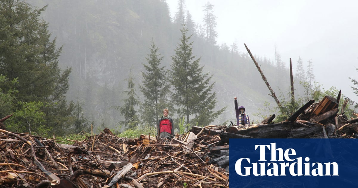 Canada: win for anti-logging protesters as judge denies firm's injunction bid