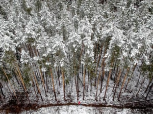 A woman walking beside a snow-covered forest outside Moscow