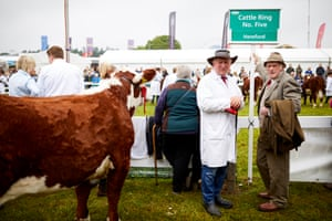 Farmers and a cow at the Great Yorkshire Show in Harrogate, England