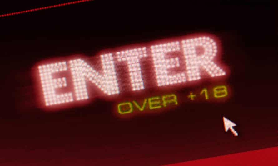 """""""enter over 18"""" warning on internet site"""