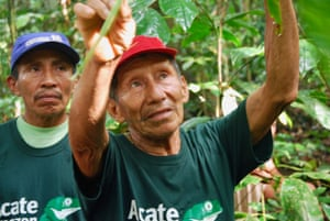 "Alberto Bai, a Matsés traditional healer, in the ""healing forest' near Buenas Lomas Nueva in Peru's Amazon."