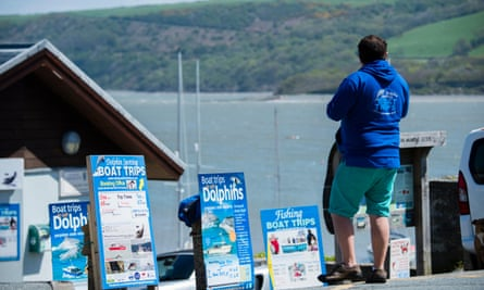 Signs advertising dolphin watching trips on Cardigan Bay