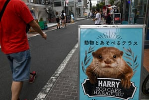 A promotional signboard for a pet cafe that features otters is displayed at the Harajuku district in Tokyo