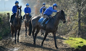 Horses from the Colin Tizzard yard make their way back from the trainer's gallops.