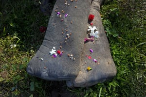 Villagers offer flowers to a wild tusker, laying dead in a field in Panbari village on the outskirts of Gauhati, India