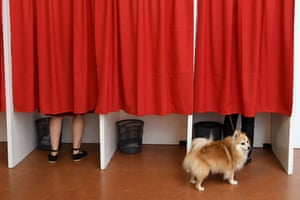 Castelsarrasin, FranceA dog waits outside voting booths at a polling station during the first round of the French legislative elections