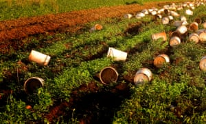 Buckets on farm land