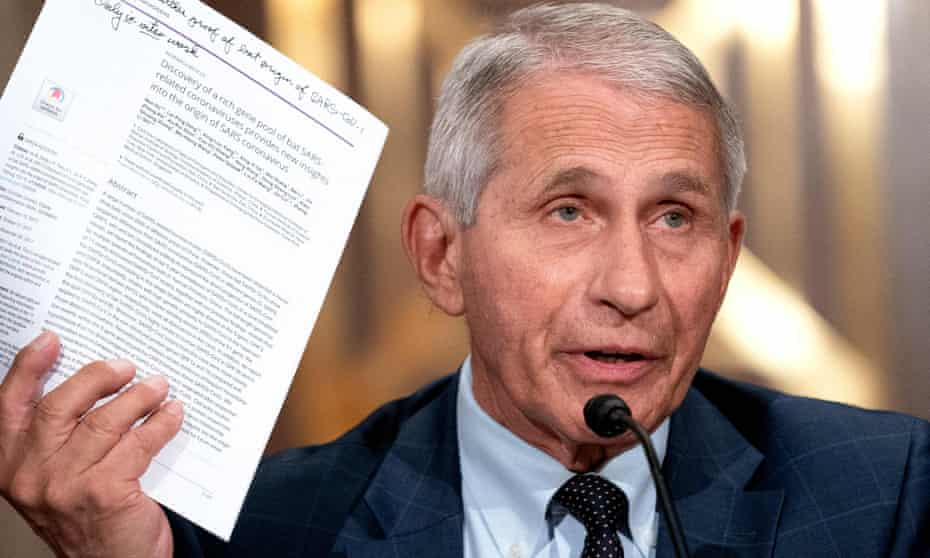 Dr Anthony Fauci speaks during Senate testimony in July.