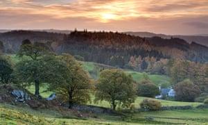 Gwydyr Forest, Snowdonia, Wales
