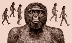 Our ancestry is still not entirely clear, although there is strong evidence for specimens such as Ardipithecus ramidus, centre, being a direct ancestor or very close to our lineage.