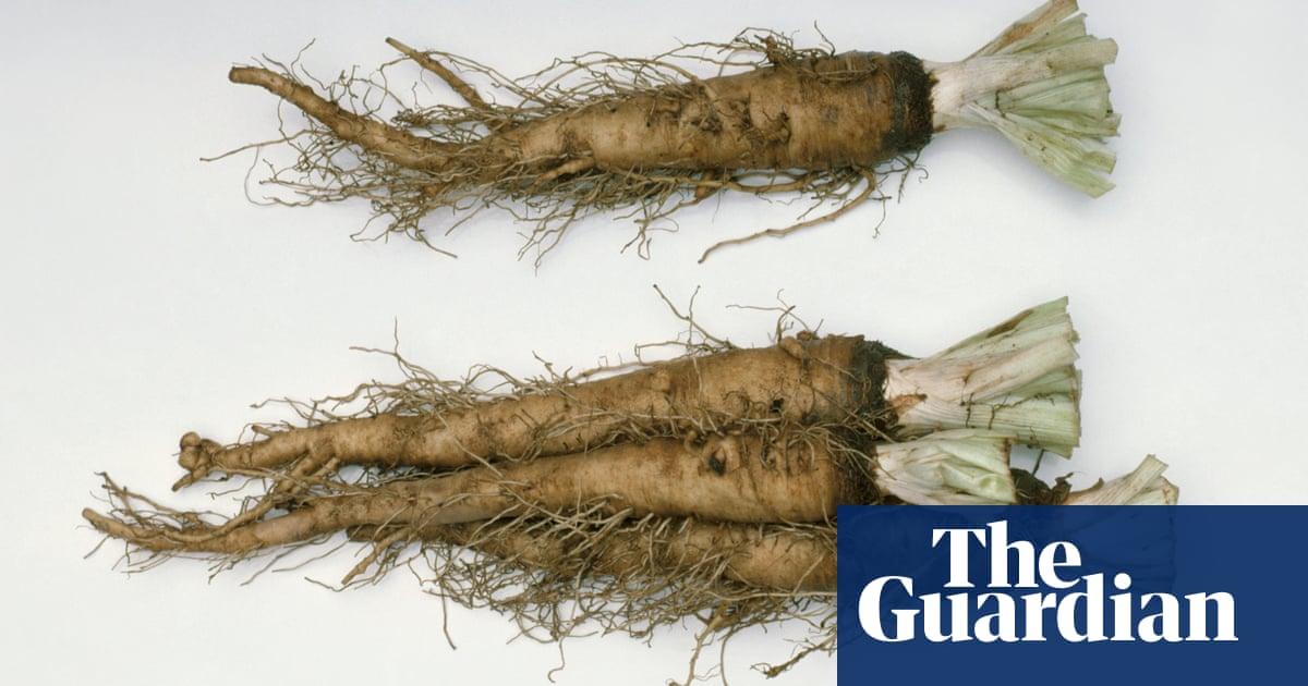 Salsify Waitrose Brings Back Forgotten Victorian Vegetable Food