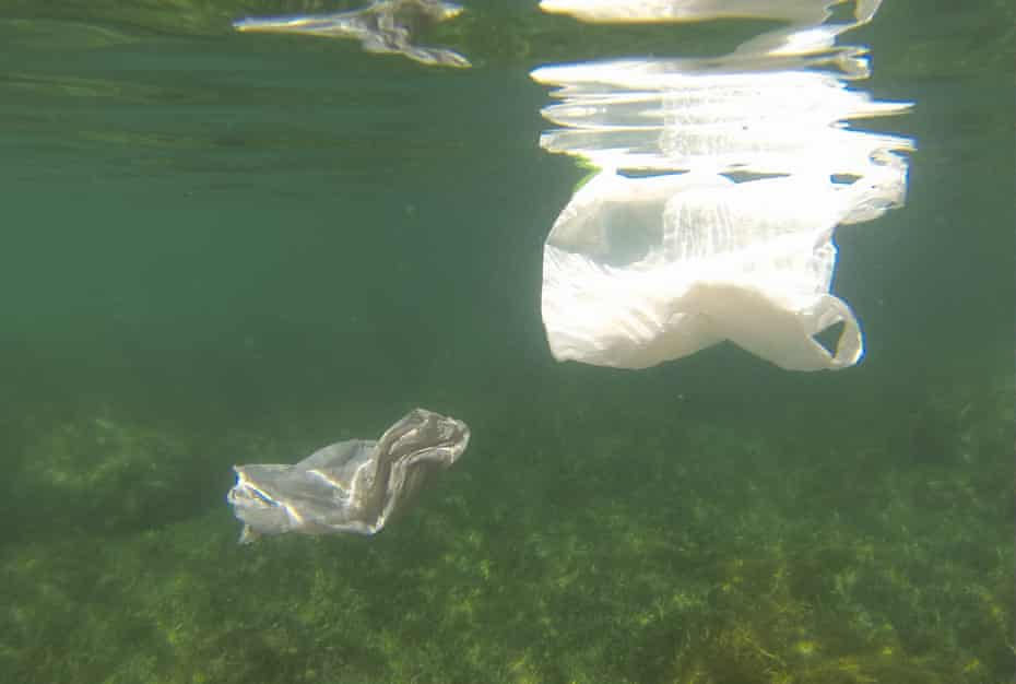 Plastic bags floating in the ocean off the coast of Western Australia.